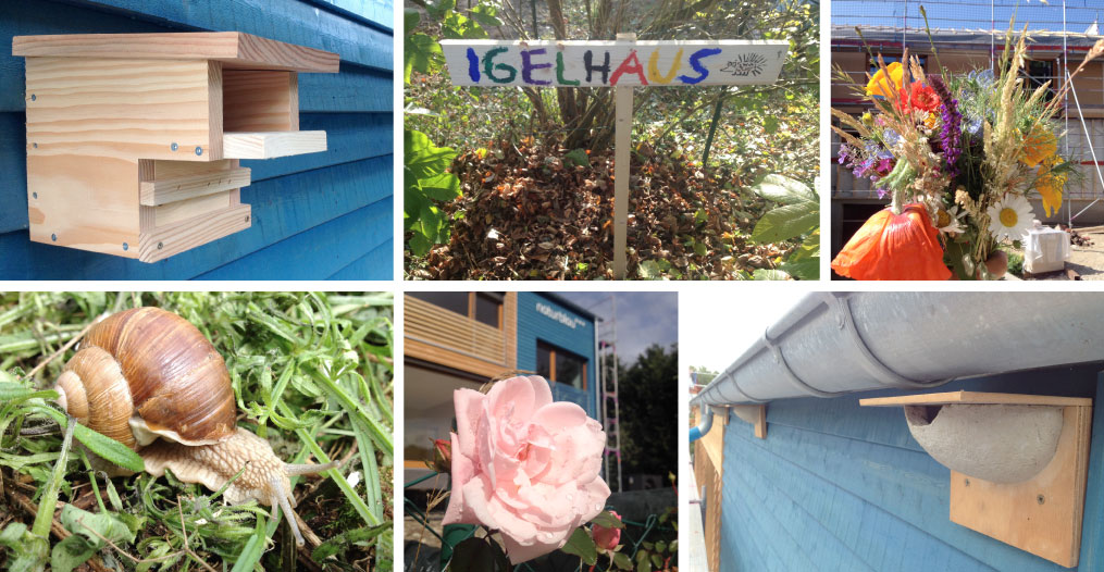naturblau_naturbau_Collage_03