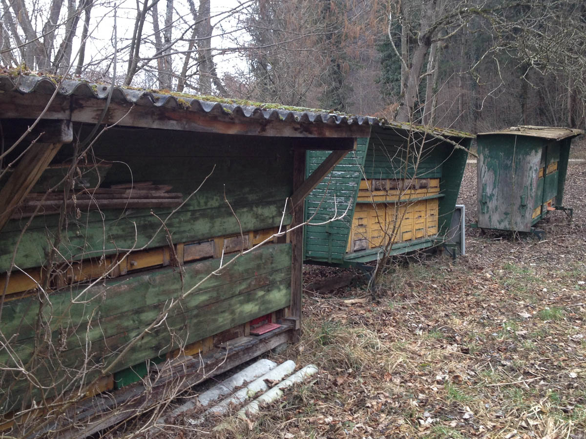 naturblau_naturbau_2018_03-01c_Umgebung