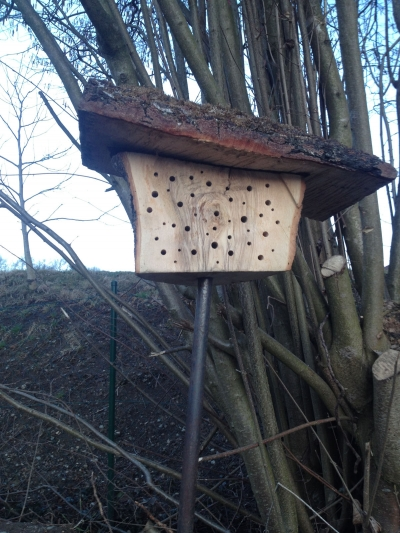 naturblau_naturbau_2018_03-06c_Insektenhotels