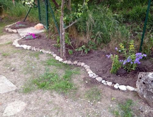 Blumenstauden setzen