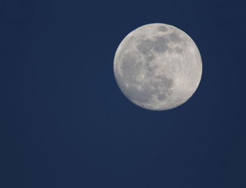Mann (und Musik) im Mond